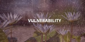 Vulnerability-CQ