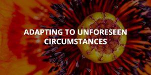 Adapting to Unforeseen Circumstances